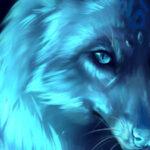 Profile picture of DreamWolf